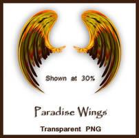Paradise Wings by shd-stock