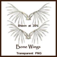 Bone Wings by shd-stock