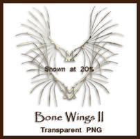 Bone Wings II by shd-stock