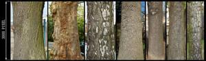 Bark Texture Pack 2