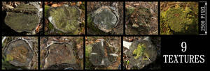Tree Stump Texture Pack - 1