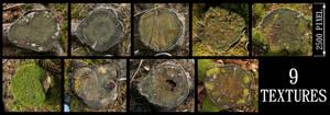 Tree Stump Texture Pack - 2