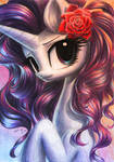 about Rarity and red roses