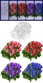 FREE - Rose image stock + Line