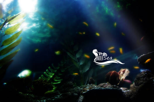 Under The Sea - Wallpaper Pack