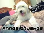Fangs Brushes
