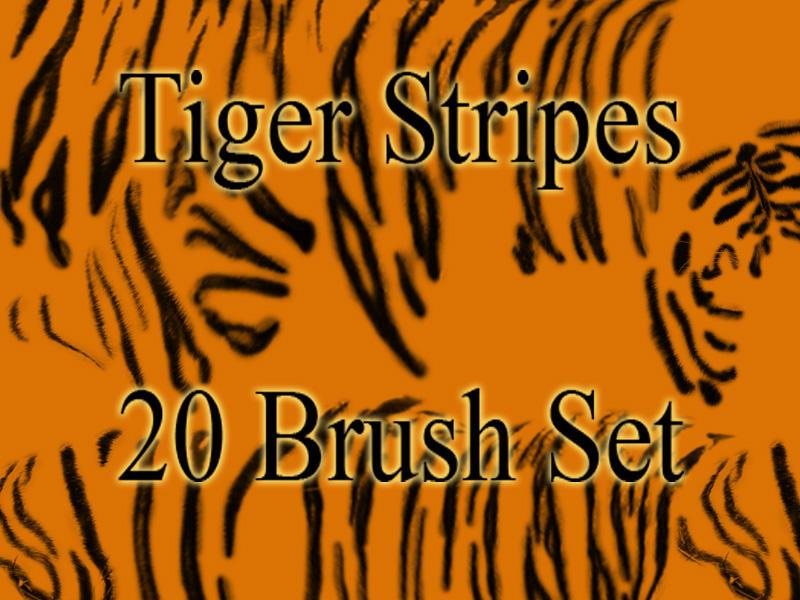 Tiger Stripes Brush Set by critelli