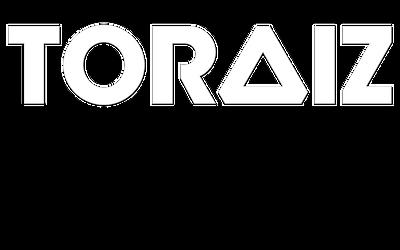 Toraiz Logo Vector