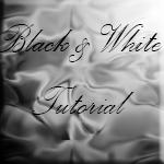 Moniquedb-Stock: BW tutorial by Moniquedb-Stock