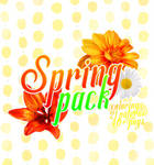Spring Pack (1 YEAR ON DA)