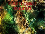 Project Grunge Brush Set