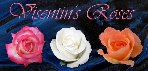 Visentin's Roses