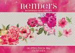 Renders 001 // Flowers Pngs