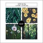Stock 001 // Nature