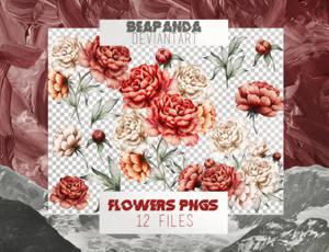Renders 017 // Flowers Pngs