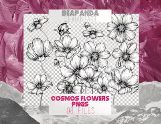 Renders 023 // Cosmos Flower Pngs by BEAPANDA
