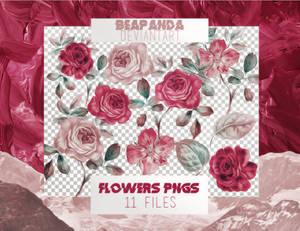 Renders 026 // Flowers Pngs