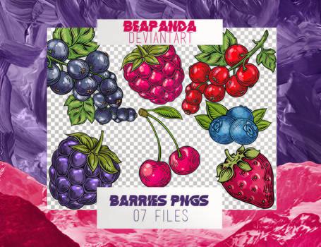 Renders 030 // Berries Pngs