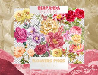 Renders 031 // Flowers Pngs by BEAPANDA