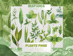 Renders 035 // Plants Pngs