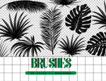 Brushes 008 // Tropical