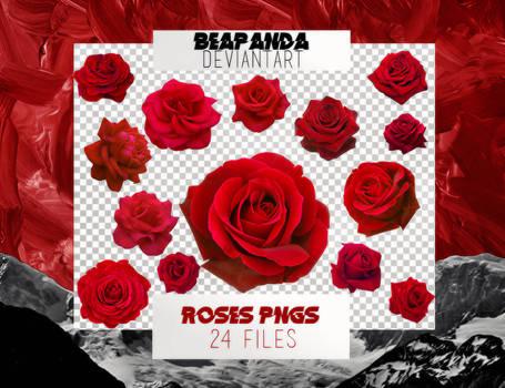Renders 043 // Roses Pngs