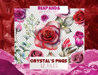 Renders 049 // Roses Pngs