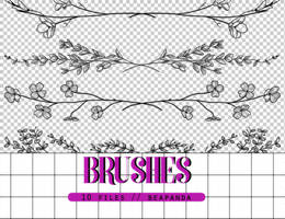 Brushes 015 // Floral Dividers