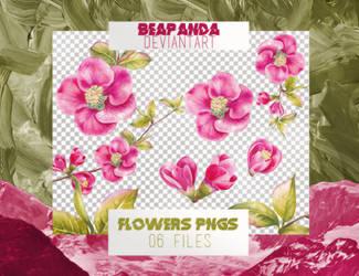 Renders 053 // Flowers Pngs by BEAPANDA