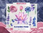 Renders 054 // Flowers Pngs