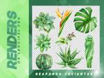 Renders 093 // Tropical Pngs
