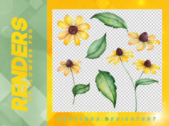 Renders 112 // Flowers Pngs by BEAPANDA