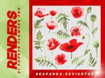Renders 134 // Poppys Flowers Pngs