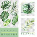 Renders 160 // Tropical Plants Pngs