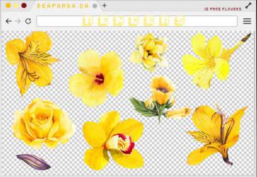 Renders 205 // Yellow Flowers Pngs by BEAPANDA