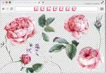 Renders 227 // Flowers Pngs