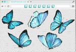 Renders 234 // Butterfly Pngs