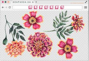 Renders 256 // Flowers Pngs by BEAPANDA