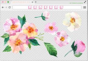 Renders 264 // Flowersl Pngs by BEAPANDA
