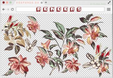 Renders 283 // Floral Pngs by BEAPANDA