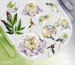 Renders 309 // Flowers Pngs