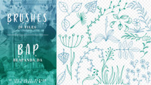 Brushes 066 // Floral