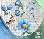 Renders 354 // Flowers Pngs