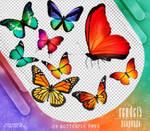 RENDERS   Butterfly Pngs