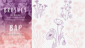 Brushes 088 // Flowers