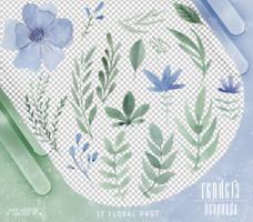 Renders 404 // Floral Pngs