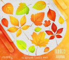 Renders 412 // Autumn Leaves Pngs