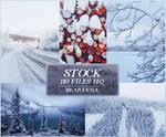 Stock 049 // Winter