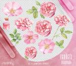 Renders 447 // Flowers Pngs
