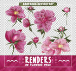 Renders 503 // Flowers Pngs